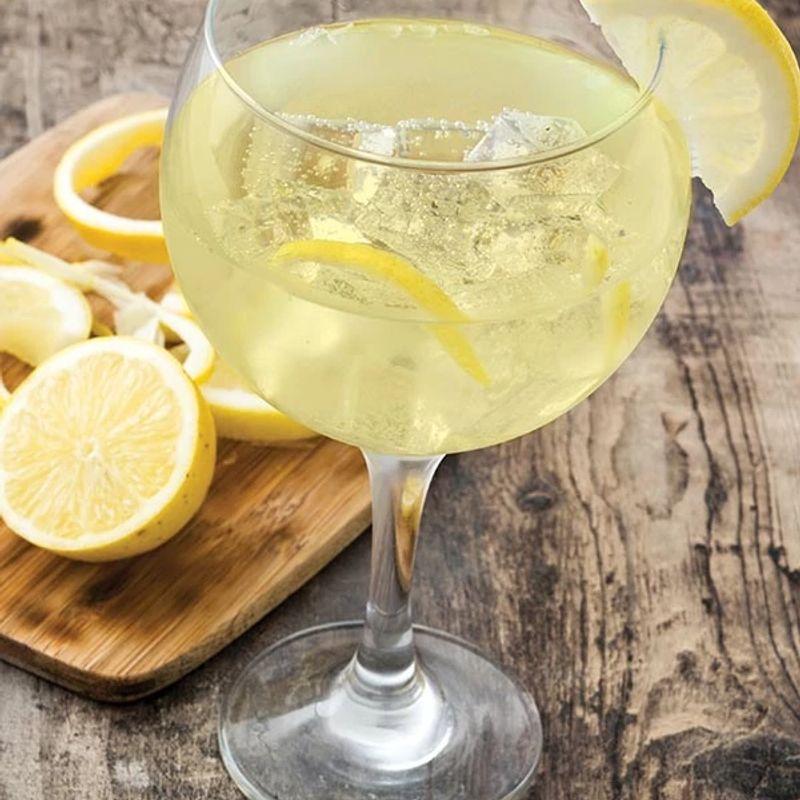 Gin Tonic Aromatico